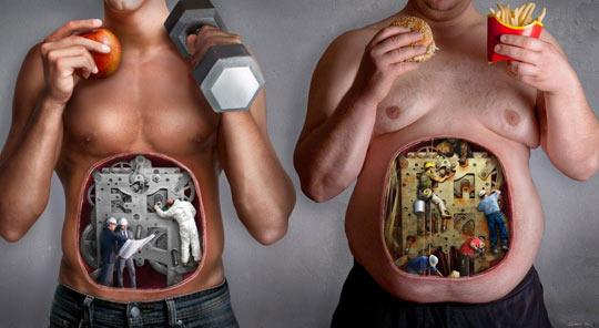 Dicas Para Quem Quer Ser Sarado e Vegetariano ao Mesmo Tempo