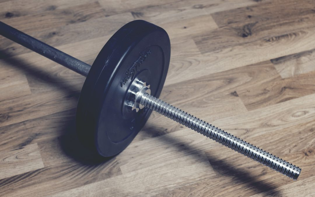 Saiba tudo sobre o Programa Q48 – perder peso, ganhar massa e mais dicas