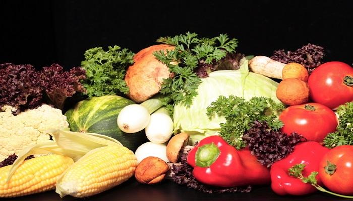 Dieta da USP Original -> Como Funciona e Cardápio Passo-a-Passo