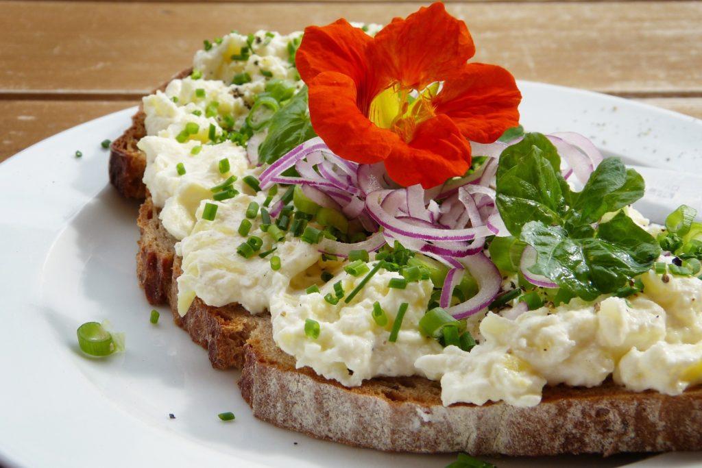【Como melhorar a flora intestinal】- dicas, alimentos, saúde